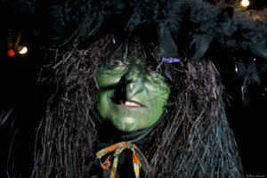 Wicca D Witch green closeup